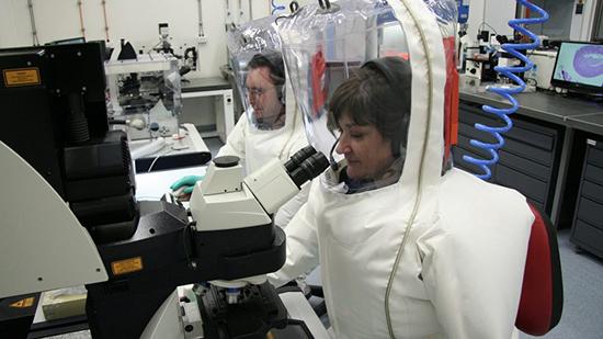 Как геном нового штамма коронавируса влияет процесс создание вакцины от инфекции