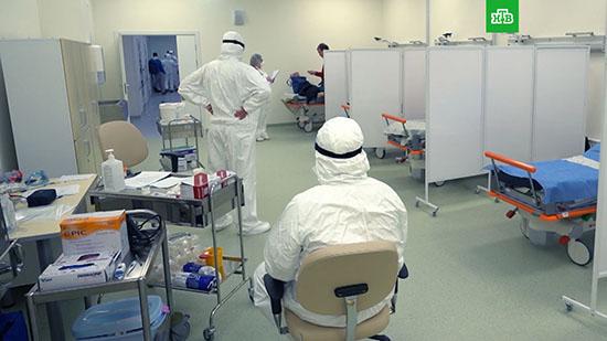 Основные отличия между некоторыми видами гриппа (свиным и птичьим) и новым китайским коронавирусом